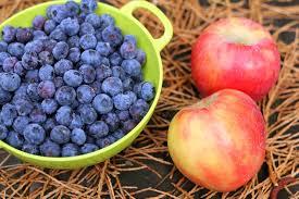 Яблоки и ягоды черники для повидла фото