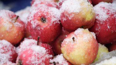 Яблоки замороженные фото